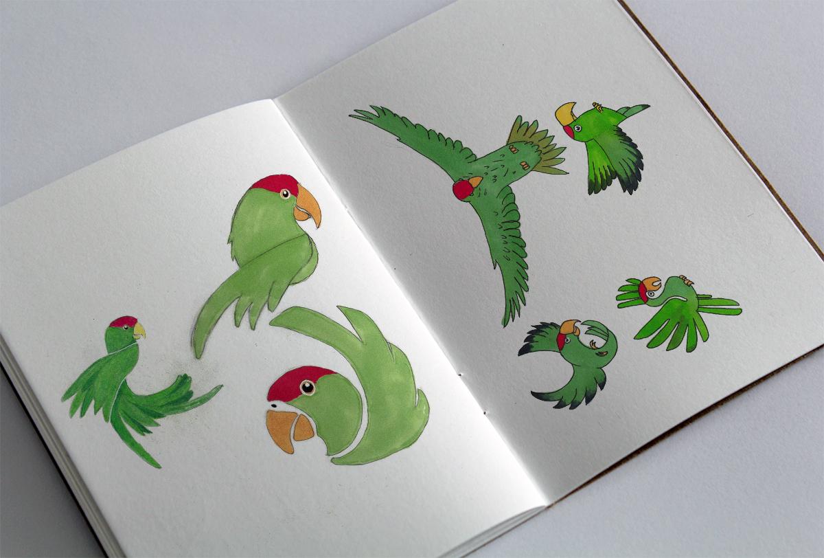 Logo Design Concept Sketches