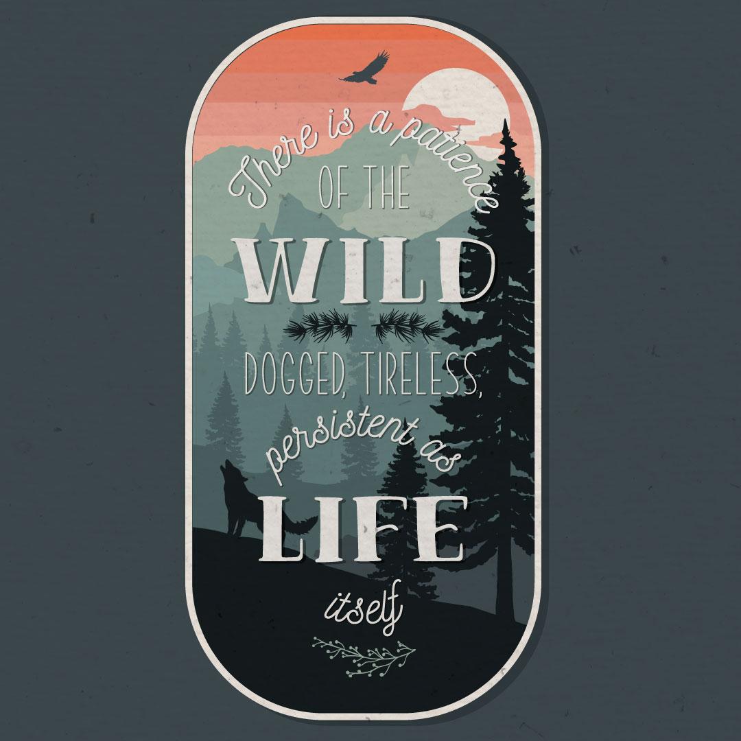 The Wild illustration